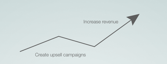 Upsell campaigns to increase revenue