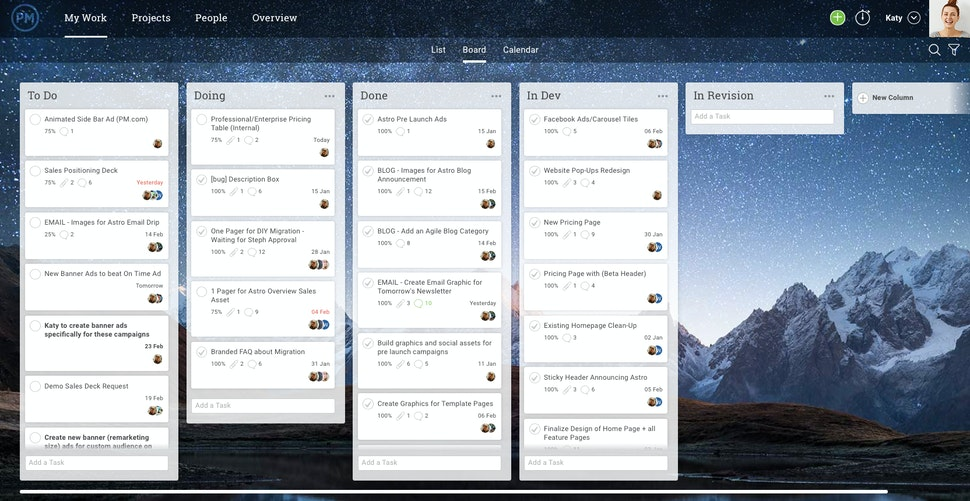 projectmanager.com product screenshot