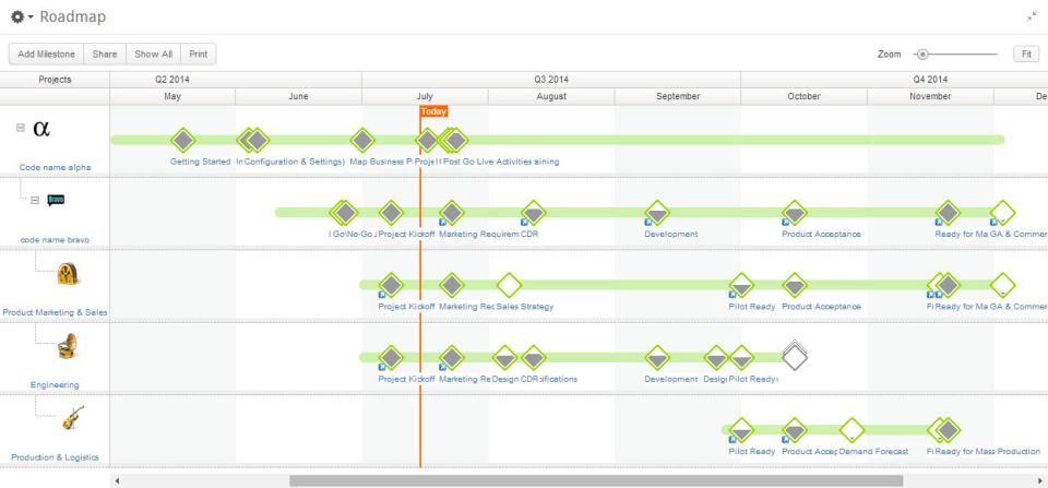 Clarizen product screenshot